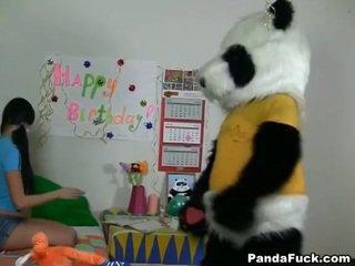 Panda gets young rumaja babeh