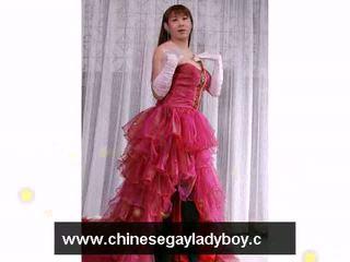 Rome shemale wellington ladyboy vs chinois ladyboy