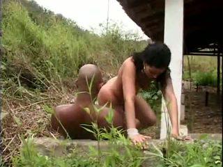 巴西人 性別 slavery