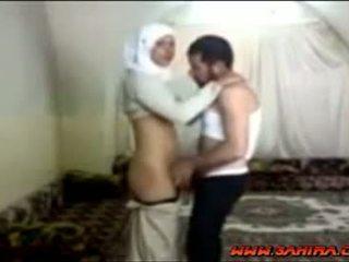 מצרי hijab הזונה