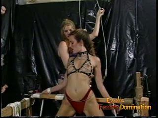 مذهل starlets حقا loved filming بعض غريب عبودية والهيمنة، السادية، الماسوشية