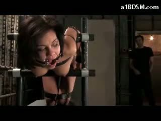 Girl Tied To Chair In Doggy Mouthgag Getting Her Mouth Fucked Whipped Pussy Fucked In The Basement