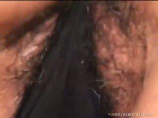 Sages брадати путка gets covered в изпразване
