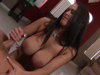 brunette, bộ ngực to, carmella bing