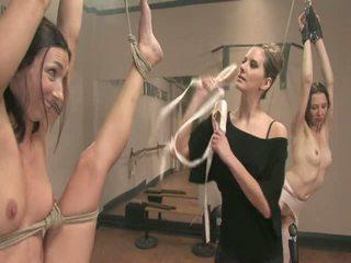 芭蕾舞女演員 doxies