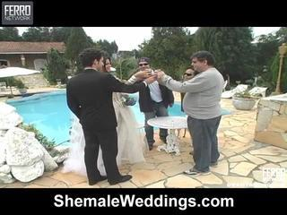Mix Of Thais, Laiza, Carol By Shemale Weddings