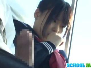 Pubblico autobus puts suo moth dentro il autobus riders lap
