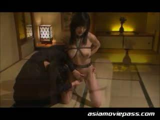 japāna, bdsm, vergs