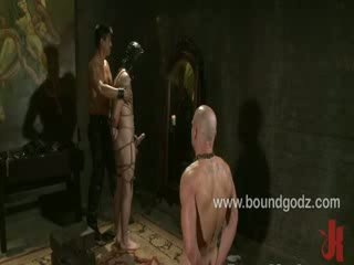 porno le plus chaud, gai, plus cuir