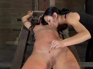 sex fresh, humiliation ideal, new submission real