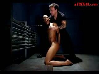 Hitam gadis mouthgag alat seks di leher spanked puting tortured dengan klip mengisap kontol di itu penjara