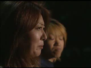 japán, mert, kakasok, anya