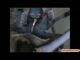 3d Anime Caught And Brutally Fucked By Spider Monsters