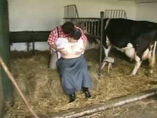 cea mai tare spectacol calitate, lapte, cea mai tare you mai mult