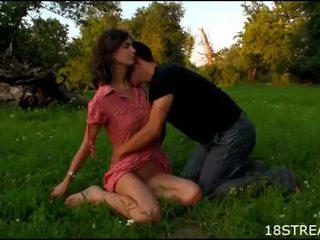 הארדקור meadow מזיין