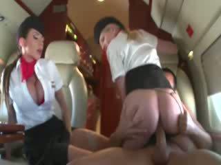 Stewardesses na koni a customers kohout