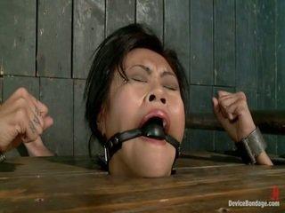 Latina anal indian anal
