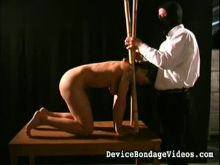 Suspended, stretched 과 humiliated