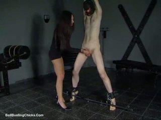 Slapping хуй и ballbusting cbt
