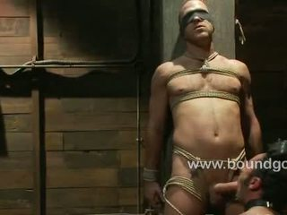 Nomad asks for permission to cum hard