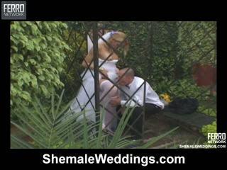 Alessandra cocky خنثى عروس
