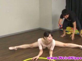 융통성있는 아시아의 ballet 인형 고양이 licked