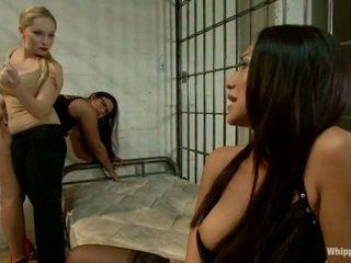 hq bruneta, velký oholený, vy lesbický sex více