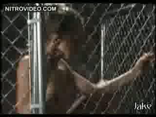 ayam jantan, fucking