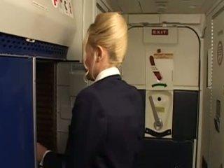 seragam, stewardess
