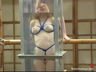 Adrianna nicole appreciates being drowned și got laid despre o futand jucărie